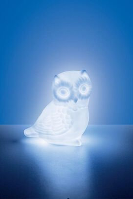 Mini Owl Color Changing LED Mood Light