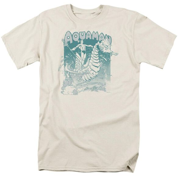 Dc Catch A Wave Short Sleeve Adult T-Shirt
