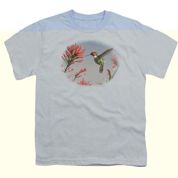 WILDLIFE ANNAS HUMMINGBIRD - S/S YOUTH 18/1 - LIGHT BLUE T-Shirt