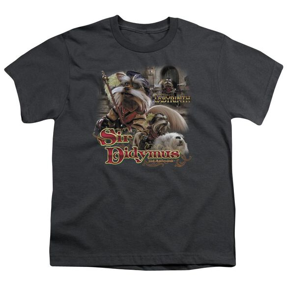 Labyrinth Sir Didymus Short Sleeve Youth T-Shirt