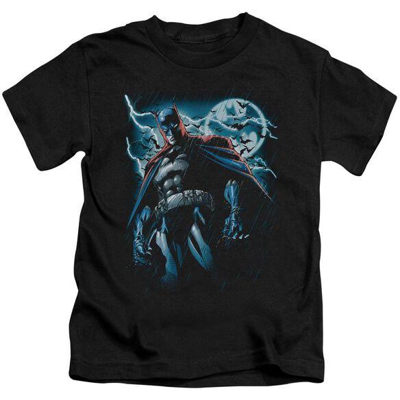 Batman Stormy Knight Short Sleeve Juvenile Black T-Shirt