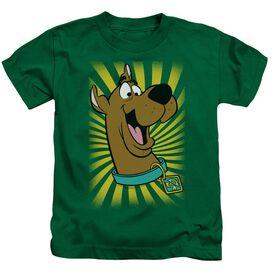 Scooby Doo™ T Shirt Short Sleeve Juvenile Kelly T-Shirt