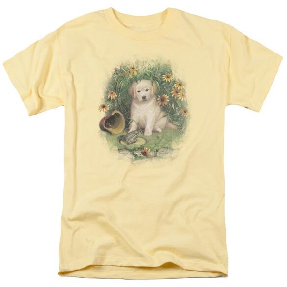 Wildlife A Prince Perhaps Yellow Lab Short Sleeve Adult Banana T-Shirt