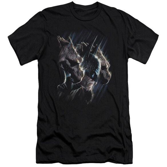 Batman Gargoyles Short Sleeve Adult T-Shirt