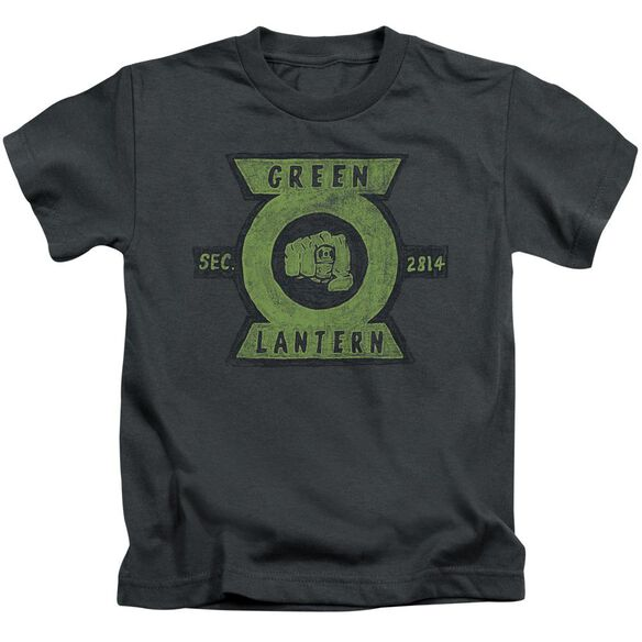 Green Lantern Section Short Sleeve Juvenile T-Shirt