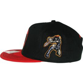 Thundercats Logo Lion-O Side Snapback Hat
