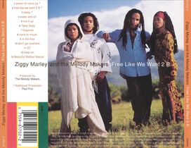 Ziggy Marley & the Melody Makers - Free Like We Want 2 B