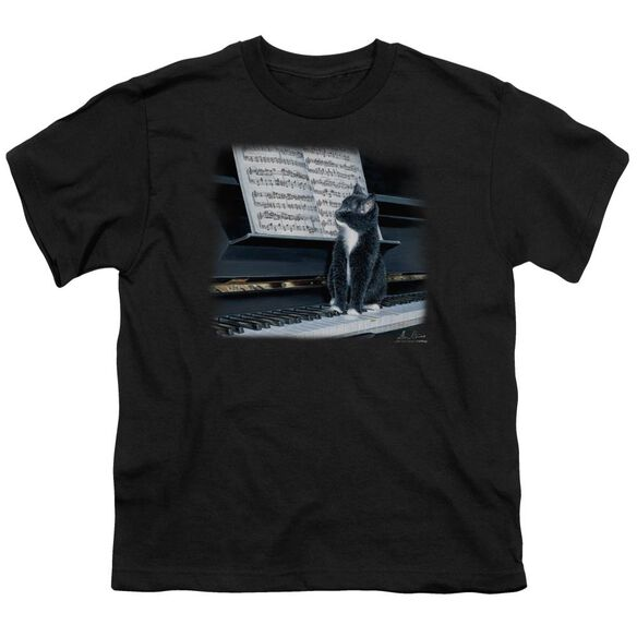 Wildlife Kitten On The Keys Short Sleeve Youth T-Shirt