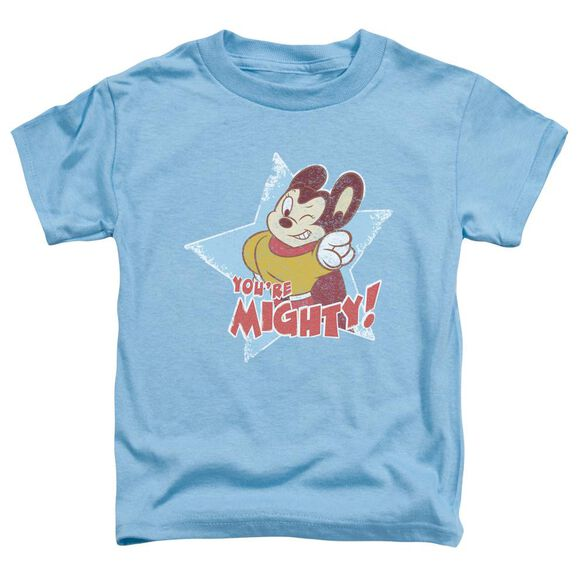 Mighty Mouse You're Mighty Short Sleeve Toddler Tee Carolina Blue T-Shirt