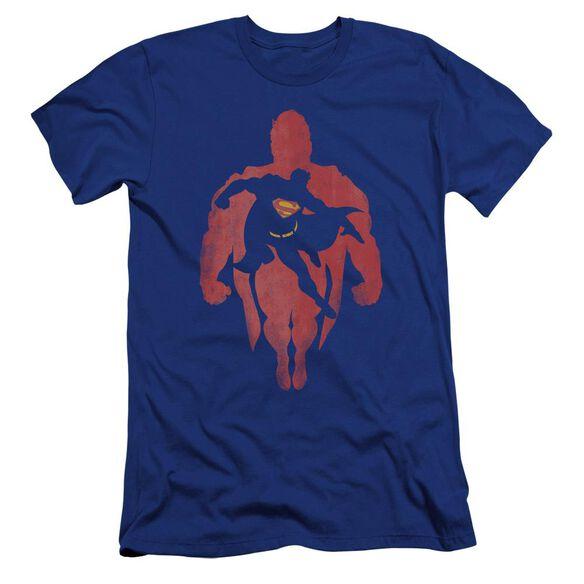 Superman Super Knockout Premuim Canvas Adult Slim Fit Royal
