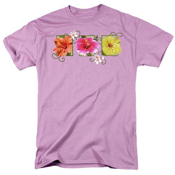 GARDEN HIBISCUS TRIO - S/S ADULT 18/1 - LAVENDAR T-Shirt