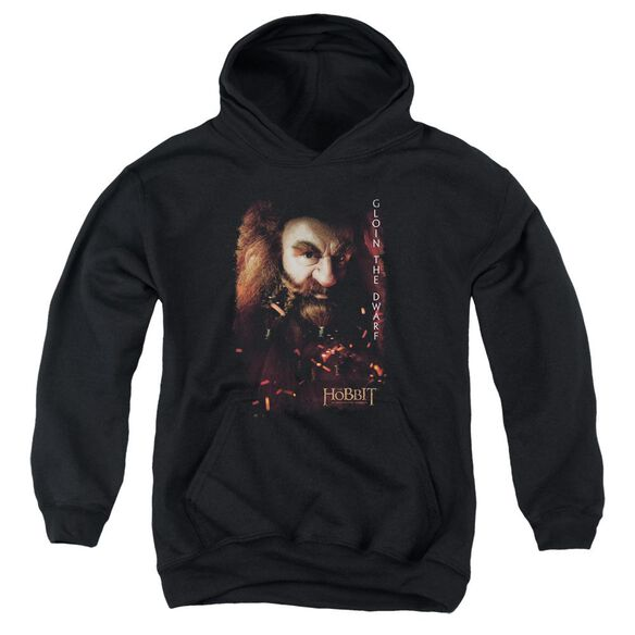 The Hobbit Gloin Poster Youth Pull Over Hoodie