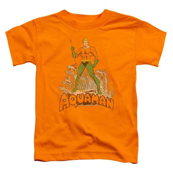 Dc Aquaman Distressed Short Sleeve Toddler Tee Orange Lg T-Shirt