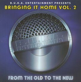 Various Artists - Bringing It Home, Vol. 2: From the Old to the New