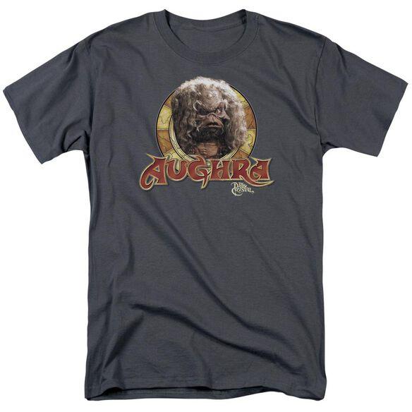 Dark Crystal Aughra Circle Short Sleeve Adult Charcoal T-Shirt