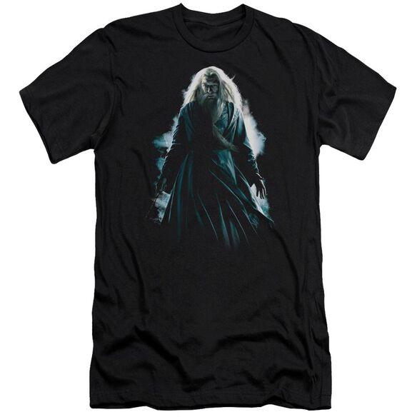 Harry Potter Dumbledore Burst Hbo Short Sleeve Adult T-Shirt