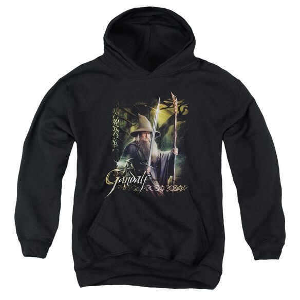 Hobbit Sword And Staff Youth Pull Over Hoodie