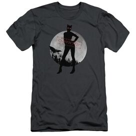 Arkham City Catwoman Convicted Short Sleeve Adult T-Shirt