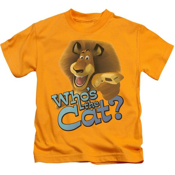Kung Fu Panda Who's The Cat Short Sleeve Juvenile T-Shirt