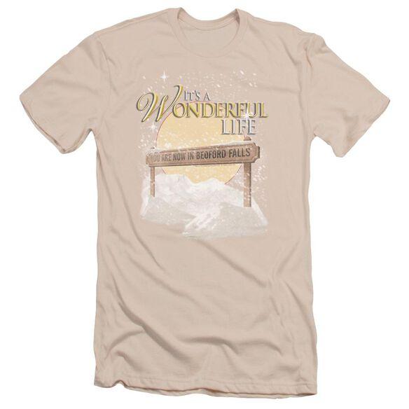 It'S A Wonderful Life Wonderful Story Short Sleeve Adult T-Shirt
