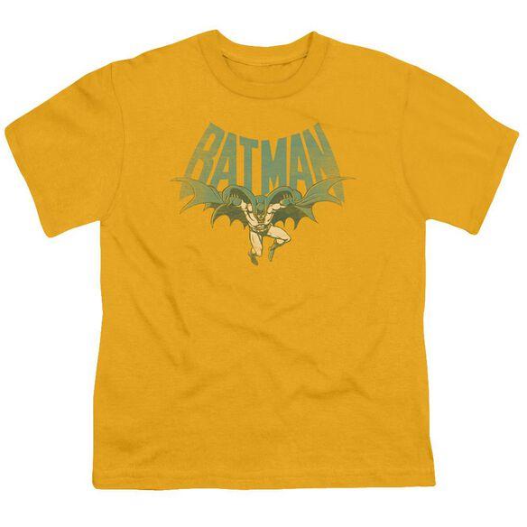Dc Flying Bat Short Sleeve Youth T-Shirt