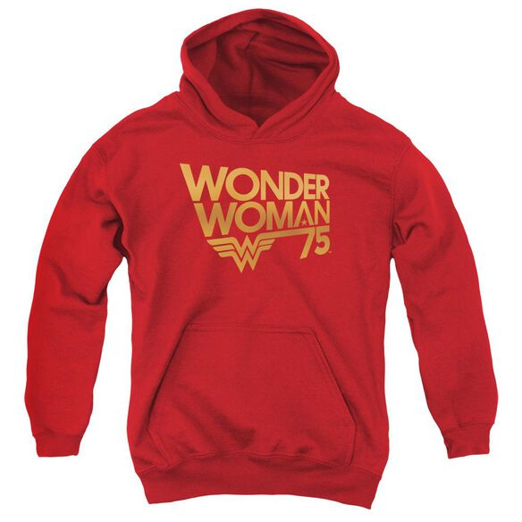 Wonder Woman Wonder Woman 75 Th Anniversary Gold Logo Youth Pull Over Hoodie