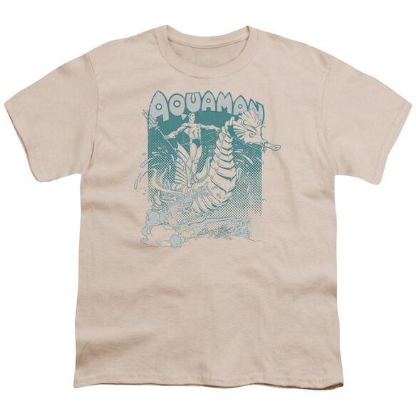 Dc Catch A Wave Short Sleeve Youth T-Shirt