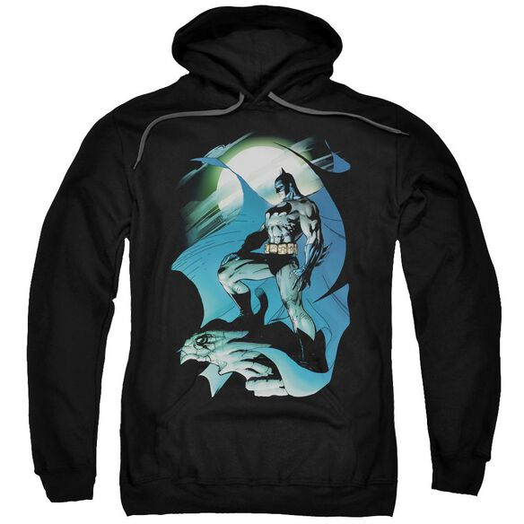 Batman Glow Of The Moon Adult Pull Over Hoodie