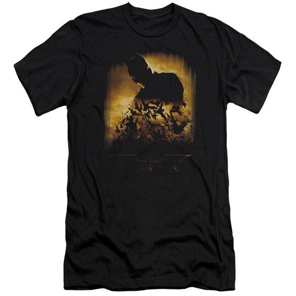 Batman Begins Bats Short Sleeve Adult T-Shirt