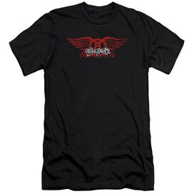 Aerosmith Winged Logo Premuim Canvas Adult Slim Fit