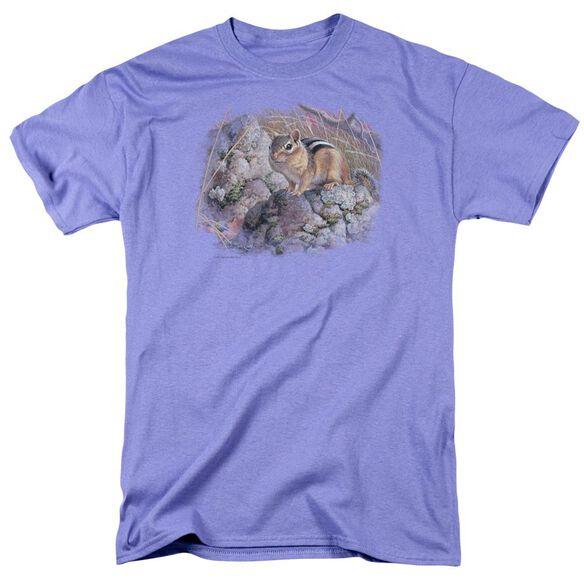 Wildlife Chipmunk Surprise Short Sleeve Adult Lavendar T-Shirt