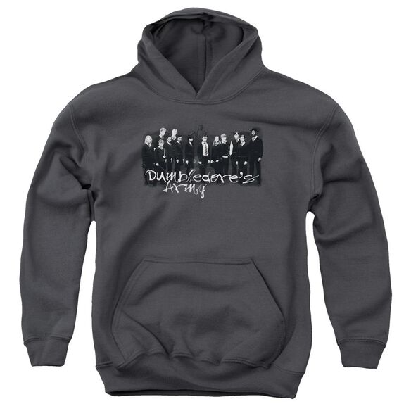Harry Potter And The Order Of Phoenix Da Squad Youth Pull Over Hoodie
