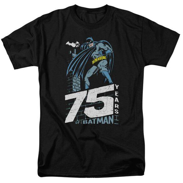 Batman Rooftop Short Sleeve Adult T-Shirt
