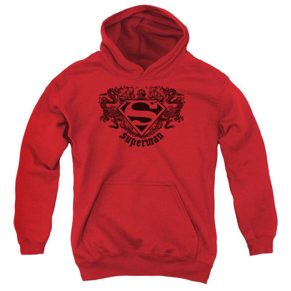 Superman Superman Dragon Youth Pull Over Hoodie