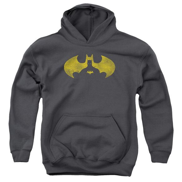 Batman Bat Symbol Knockout Youth Pull Over Hoodie