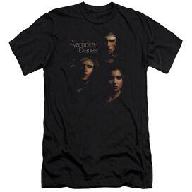 Vampire Diaries Smokey Veil Short Sleeve Adult T-Shirt