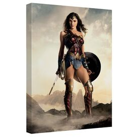 Justice League Movie Jlm Wonder Canvas Wall Art With Back Board