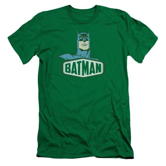 Dco Batman Sign Short Sleeve Adult Kelly T-Shirt