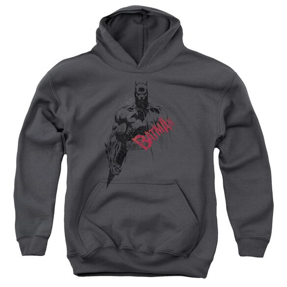 Batman Sketch Bat Red Logo Youth Pull Over Hoodie