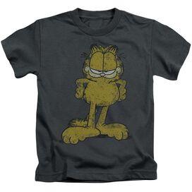 Garfield Big Ol' Cat Short Sleeve Juvenile Charcoal T-Shirt
