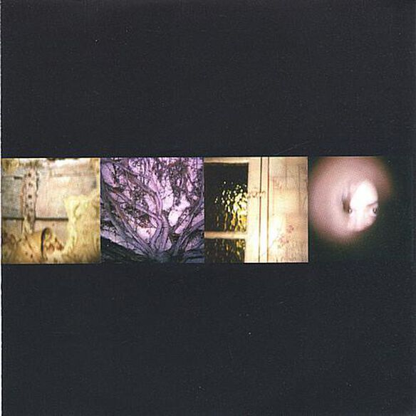 Each Day A Lie