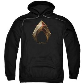 Justice League Movie Aquaman Logo Adult Pull Over Hoodie