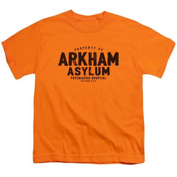 Batman Arkham Asylum Short Sleeve Youth T-Shirt