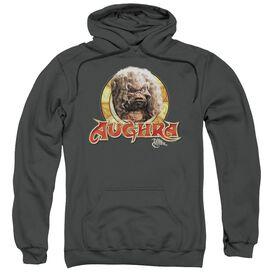 Dark Crystal Aughra Circle Adult Pull Over Hoodie