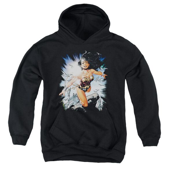 Jla Of Themyscira Youth Pull Over Hoodie