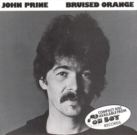 John Prine - Bruised Orange