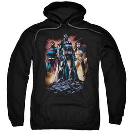 Jla Take A Stand Adult Pull Over Hoodie