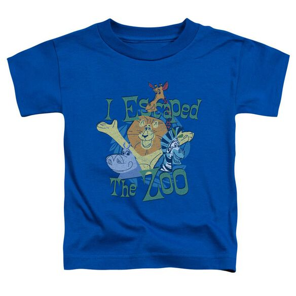 Madagascar Escaped Short Sleeve Toddler Tee Royal Blue T-Shirt