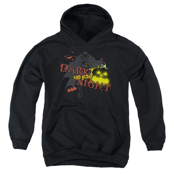 Batman Dark And Scary Night Youth Pull Over Hoodie