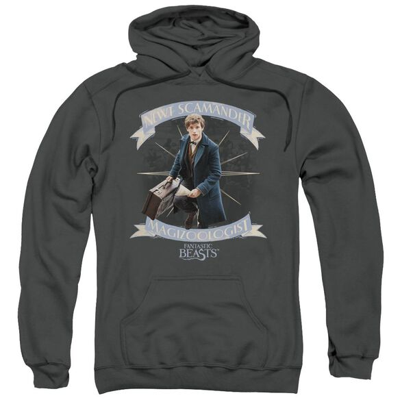 Fantastic Beasts Newt Scamander Adult Pull Over Hoodie